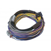 Elite 550 Basic Universal Wire-in Harness Length: 2.5m (8').