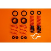 MSS SPORTS FULLY ADJUSTABLE KIT BMW F 1 TO 4 SERIES